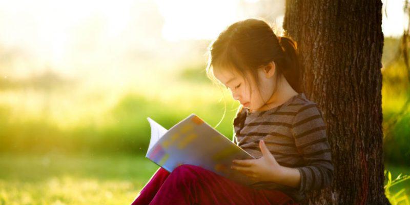 A diferença entre  compreensão e interpretação de textos