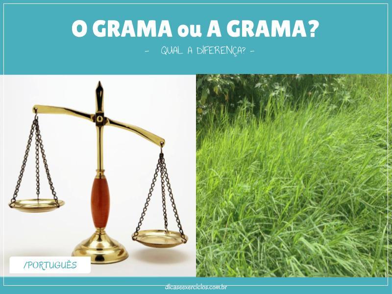 O grama ou A grama: qual a diferença?