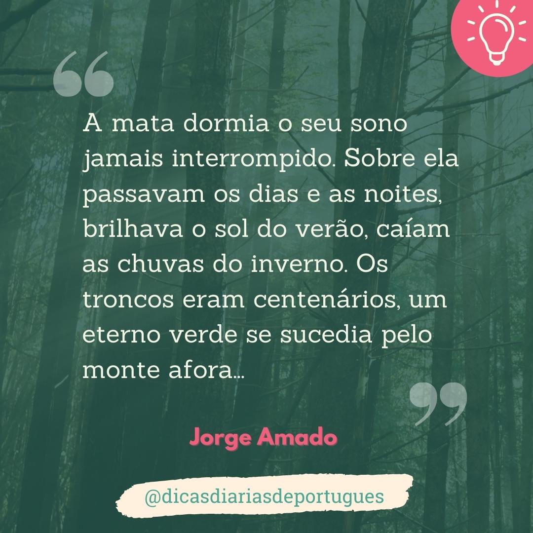 Dia de proteção à floresta – Terras do Sem-Fim (Jorge Amado)